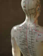 Demonstration of Acupuncture Points on Manican